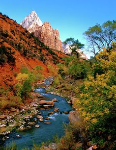 Virgin River and Zion Canyon - Utah  - Ed Riche