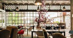 Brondo Architect Hotel in Palma - Alles über Mallorca