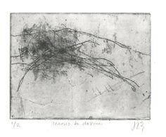 Joyce Westrop  Icarus to daVinci  Aquatint and Etched Print