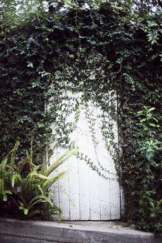 White door, looks like an entrance to a secret garden.