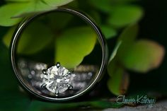 Wedding Rings - Photography - by eleanor.kathryn, via Flickr