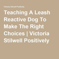 Teaching A Leash Reactive Dog To Make The Right Choices | Victoria Stilwell Positively
