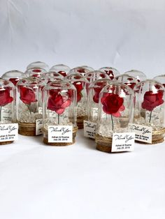 wedding favors for guests wedding favors favors dome custom favors beauty and the beast quinceanera sweet 16 rose dome favors Wedding Souvenirs For Guests, Creative Wedding Favors, Inexpensive Wedding Favors, Elegant Wedding Favors, Wedding Party Favors, Bridal Shower Favors, Handmade Wedding, Wedding Invitations, Wedding Giveaways For Guests
