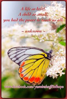 A life so brief, A child so small, you had the power to touch us all. ~ unknown