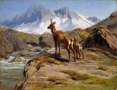 Rosa Bonheur, Chamois Mother and Baby, 1888 Oil Canvas, Canvas Wall Art, Wall Art Prints, Canvas Prints, Baby Cross Stitch Patterns, Sports Art, French Artists, British Artists, Mother And Baby