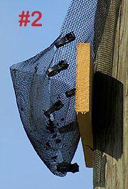 Put a pupcatcher net on your bathouse.  http://batworld.org/bat-house-pup-catcher/