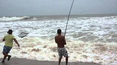 Pescar brecas y pargos desde la orilla, consejos y trucos - Todo para la pesca …