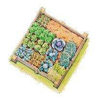 4 foot x 4 foot Spring Vegetable Garden Plan.  I\'ve been using this plan for 3 years now.    --ModernHomemaker