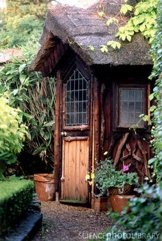 rustic shed with handmade details