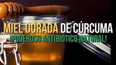 Si el resfriado acecha, aprovéchate de la naturaleza porque nos ha proporcionado algunos remedios naturales maravillosos. Esta bebida de miel y cúrcuma es altamente curativa.