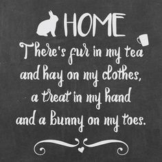 My bunny home: where there is fur in my tea...