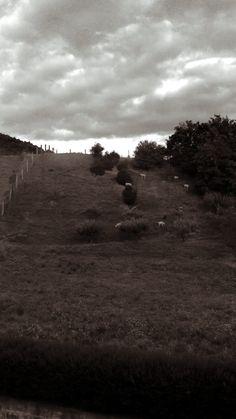 EuskalHerria, Nafarroa, Zubiri. Agosto 2014