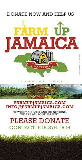 Farm Up Jamaica