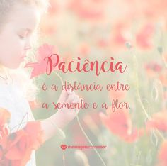 Paciência é a distância entre a semente e a flor. #mensagenscomamor #frases #pensamentos #vida #pessoas #paciência #distância #flor #reflexões