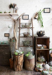 gorgeous display with cloches and suculents, wood, wire baskets, tree branch and wood crates