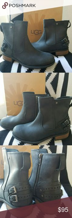 """UGG Orion Booties From UGG, the Orion women's booties feature: rich leather upper decorative heel straps UGG logo rivet medial metal zipper 7mm curly UGGpure sockliner 3mm Poron cushioning insole molded rubber outsole approx. 6.5"""" shaft height 1.5"""" leather-wrapped stacked heel Brand new . NO BOX. UGG Shoes Winter & Rain Boots"""