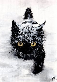 """ Let it Snow. Let it Snow "" . But Please Let Me In Black cat love Pretty Cats, Beautiful Cats, Animals Beautiful, Beautiful Pictures, I Love Cats, Crazy Cats, Cool Cats, Kittens Cutest, Cats And Kittens"