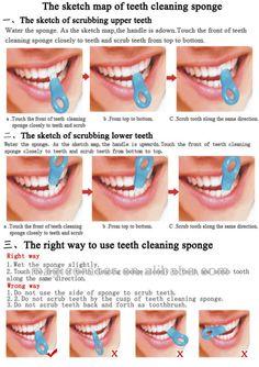 Map Of Teeth Numbers Free Interior Design Mir Detok