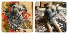Pet portraits done by DRAW ME A MONKEY  To find on facebook, Instagram and Etsy.  Get your own unique original drawing/commission here https://www.etsy.com/uk/shop/DRAWMEAMONKEY?ref=shop_sugg  Lovebirdtattoos@yahoo.com   #originaldrawing #dogportrait #commission #pet #petportrait #atrwork #portrait #bulldog #dog #animal #dog #cat #love #bestfriend  #storyotmylife #etsy #realistic #tattoo #tattooportrait #artwork #drawing #tattoo #cute #frenchbulldg #flowers #drawmeamonkey #tattooartist