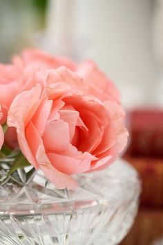 My Complimentary (Romantic) Color - coral Coral Color, Coral Pink, Live Coral, My Flower, Beautiful Flowers, Colorful Flowers, Peach Orange, Peach Rose, Do It Yourself Home