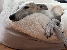 Tutoriel DIY: Coudre un panier pour chien tout doux via DaWanda.com