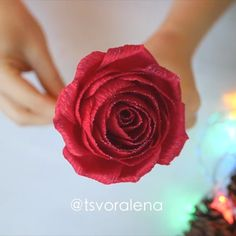 Roses are red, and red is the symbol of love😍 so show love with these beautiful handmade red roses!🌹 By: videos etiquetas DIY RED ROSE🌹 Paper Flowers Roses, Crepe Paper Roses, Paper Flowers Craft, Easy Paper Crafts, Paper Crafts Origami, Diy Crafts For Gifts, Fabric Roses Diy, Red Roses, Rose Crafts