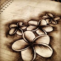 This plumeria drawing would make a nice tattoo. Nice shading.