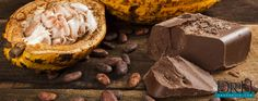 Chocolate, composed of both Cocoa & Cacao, is good for your heart, health, and libido. Discover the difference between cacao and cocao and their benefits. Love Natural, Natural Lifestyle, Different, Superfoods, How To Stay Healthy, Natural Health, Health And Wellness, Cocoa, Natural Remedies