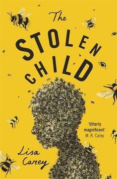 The Stolen Child by Lisa Carey https://www.amazon.co.uk/dp/1474603793/ref=cm_sw_r_pi_dp_x_3sOtybFHA2M2W