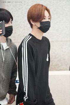 170401バンコク出国&仁川入国 Pledis Entertainment, Jeonghan, Seventeen, Boy Groups, Adidas Jacket, Athletic, Boys, Jackets, Fashion