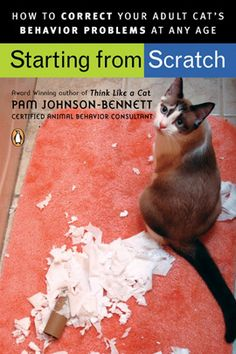 Starting from Scratch: how to correct your adult cat's behavior problems at any age