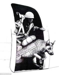 Secret history: The story of Bing has been told in a new children's book by Gil Boyd, which includes this drawing    Read more: http://www.dailymail.co.uk/news/article-2131034/Bing-World-War-Two-parachuting-dog.html#ixzz1uq5FrIsO