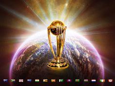 Amazing cricket world cup 2015