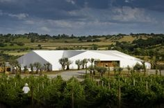 Architecture And Nature - Modern Hotel In The Vineyards, Portugal Studio Mk27, Plan Maestro, Hotels Portugal, Hotel Concept, White Building, Green Landscape, Celebrity Houses, Hotels And Resorts, Architecture Details