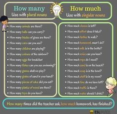 The Difference between MUCH and MANY in English - ESL Buzz