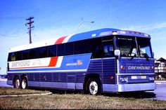 Greyhound Bus Eagle | Recent Photos The Commons Getty Collection Galleries World Map App ...
