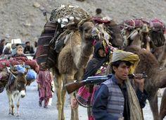 almeh: Afghan nomads in Pakistan making their way back to Afghanistan B.K. Bangash
