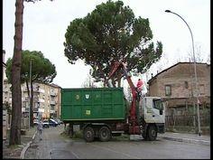 Maltempo, servizio elettrico maggiori danni a Città di Castello, San Giustino e Gubbio