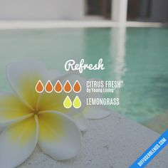 Refresh - Essential Oil Diffuser Blend