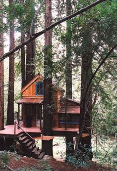 Northern California  Spring 1998  This rustic getaway cabin stands in a Redwood grove on an 80 acre parcel that was once owned by Robert Louis Stevenson. It features doors and windows that were reclaimed from the original RLS house as well many parts custom fabricated by THW in WA State.
