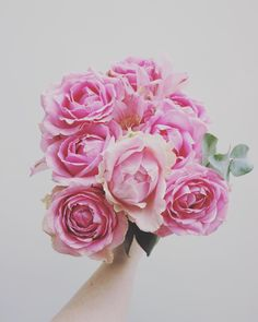Gorgeous Roses for a