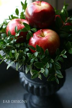 Apples and Boxwood Arrangement Idea ~ image only