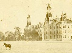 """A horse outside Old Main?!? // On September 19, 1887, Baylor held its first classes in the """"Main Building,"""" now known as Old Main."""