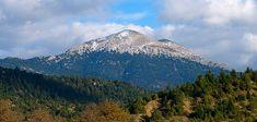 Όλυμπος Λέσβος πεζοπορία Mount Rainier, Mountains, Nature, Travel, Photos, Naturaleza, Trips, Viajes, Traveling