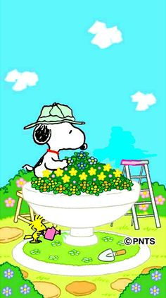 Snoopy gardening♥️♥️♥️                                                 …