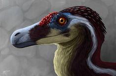velociraptor portrait - jp3 male by tnilab-ekneb121.deviantart.com on…