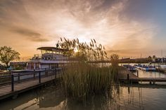 Neusiedler see / Austria by autumn sunset