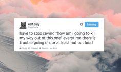 edits twitter wolf pupy wolfpupy