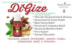 You Know I Love to Share: Indigestion Heartburn Acid Re-flux? Oil For Constipation, Home Remedies For Heartburn, Natural Remedies For Heartburn, Digize Essential Oil Young Living, Essential Oils For Heartburn, Aromatherapy Recipes, Living Essentials, Young Living Oils, Gastroenterology