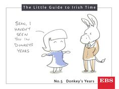 Sure 'donkey's years' could be last Saturday or six months ago. According to our survey, the average is 14 years and 59 minutes. An actual donkey lives 30 - 50 years. Irish Times, Just So You Know, Donkey, Comics, Life, Donkeys, Comic Books, Comic Book, Comic
